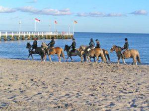 Reiten am Strand von Grömitz